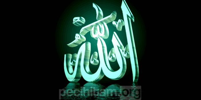 Aqidah Aswaja; Wahdaniyah, Sifat Wajib Ke-Enam Allah SWT