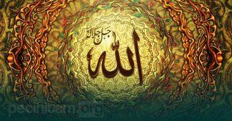 sifat wajib iradah bagi allah
