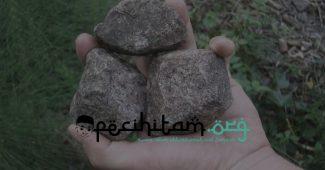 Bagaimana Cara Istinjak Menggunakan Batu Saja? Ini Kriteria Batu yang Bisa Digunakan Istinjak