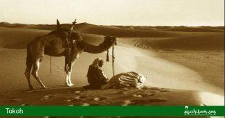 abu dzar al-ghifari