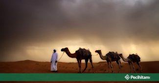 Hadis Larangan Safar Berarti Tidak Boleh Ziarah Kubur? Salah Kaprah Wahabi