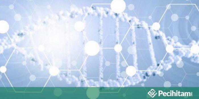Hukum Menggunakan Metode AAM atau Stem Cell Therapy untuk Mencegah Penuaan
